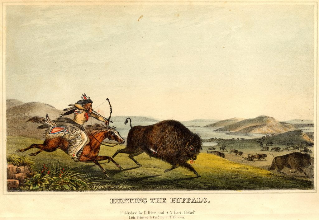 Hunting the Buffalo