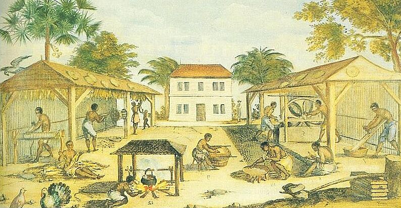 Copy of 1670 painting from Virginia showing African slaves working on a tobacco plantation.