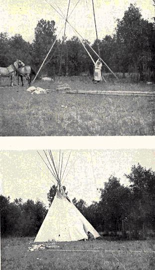 Fig. 8. Setting up a Crow Tipi. (Tetzold photo.)