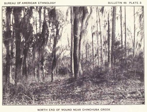 Bayou Lacomb Choctaw Mound