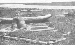 Illustration of a wokas camp at the close of the season