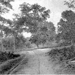 Chapel Oaks, Bird Town, Cherokee Nation