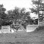 Mullberry Tree Bandstand, Eastern Cherokee Agency
