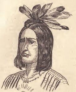 Micanope