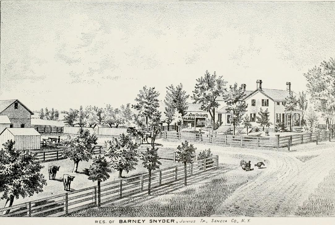 Seneca County New York Genealogy | Access Genealogy