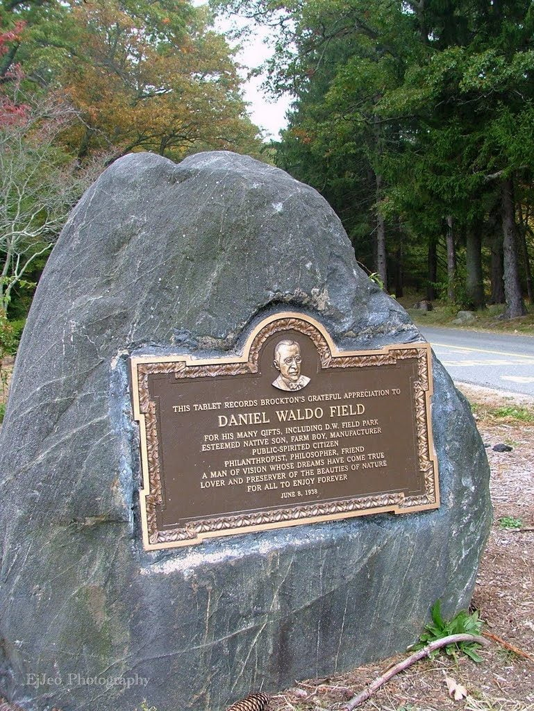Monument for David Waldo Field