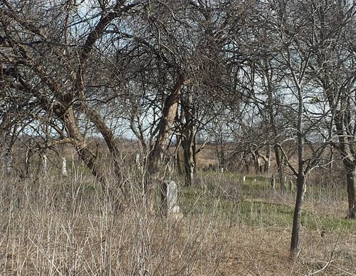 Cemetery in Mayfield, Hill County Texas